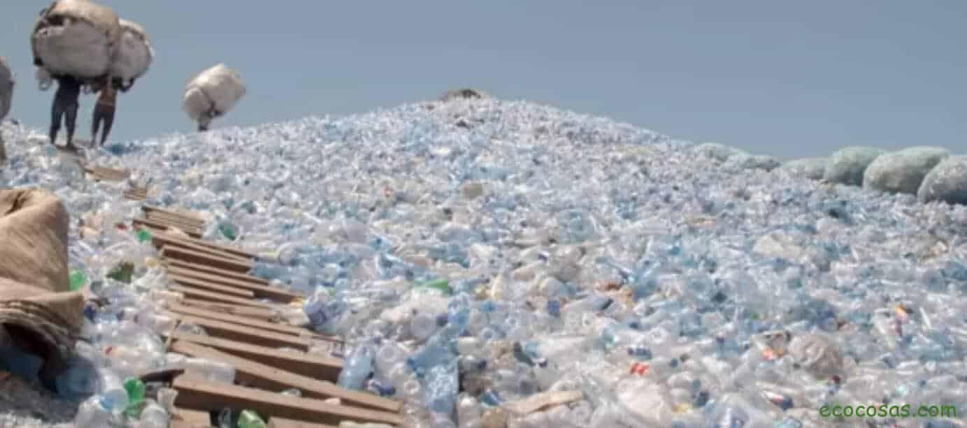 Coca-Cola y un mundo lleno de basura 1