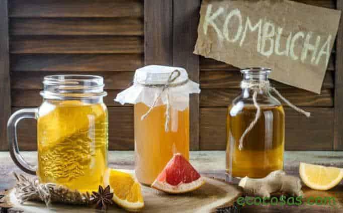 como hacer kombucha