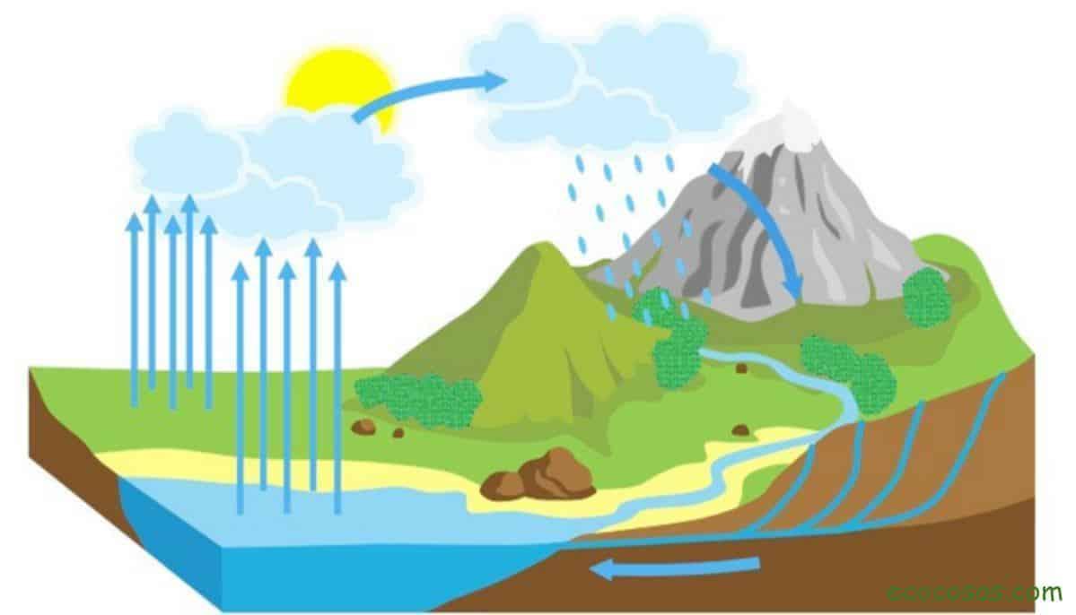 Qué Es El Ciclo Del Agua Sus 7 Fases Esquema Y Explicación