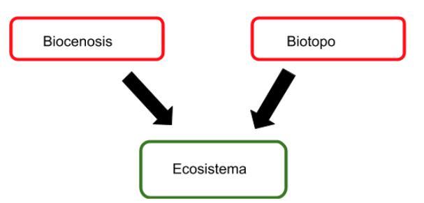 que es la biocenosis