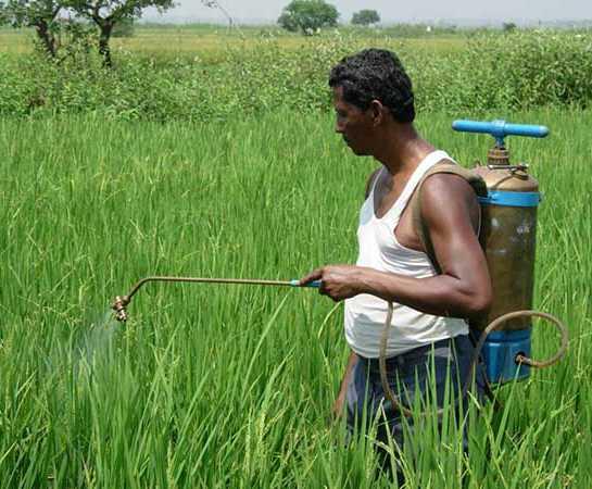 glifosato herbicida