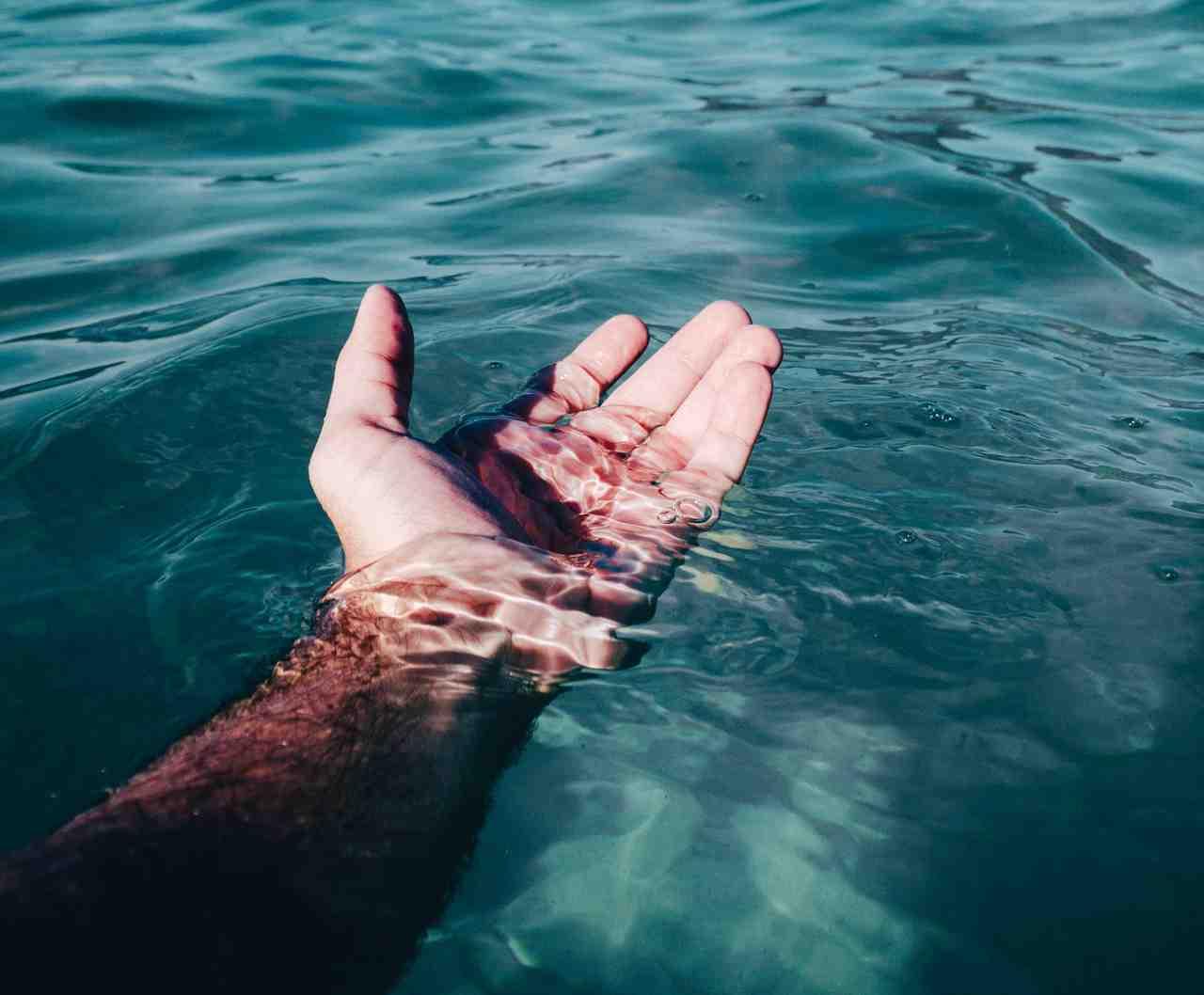 acidificacion del mar