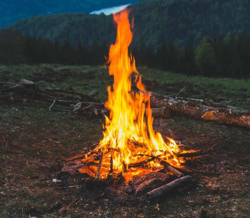 caracteristicas de los incendios forestales