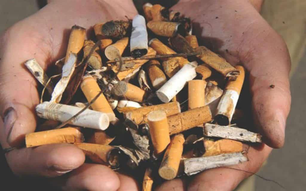 fumar sostenible
