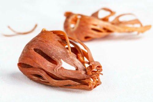 macis especia