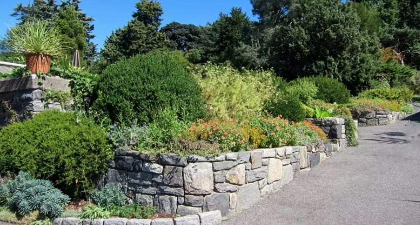 8 Formas de hacer un bancal elevado para tu huerto 2