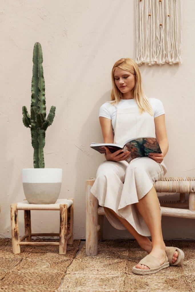 Las 5 mejores plantas para decorar tu oficina 1