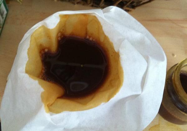 tintura madre casera