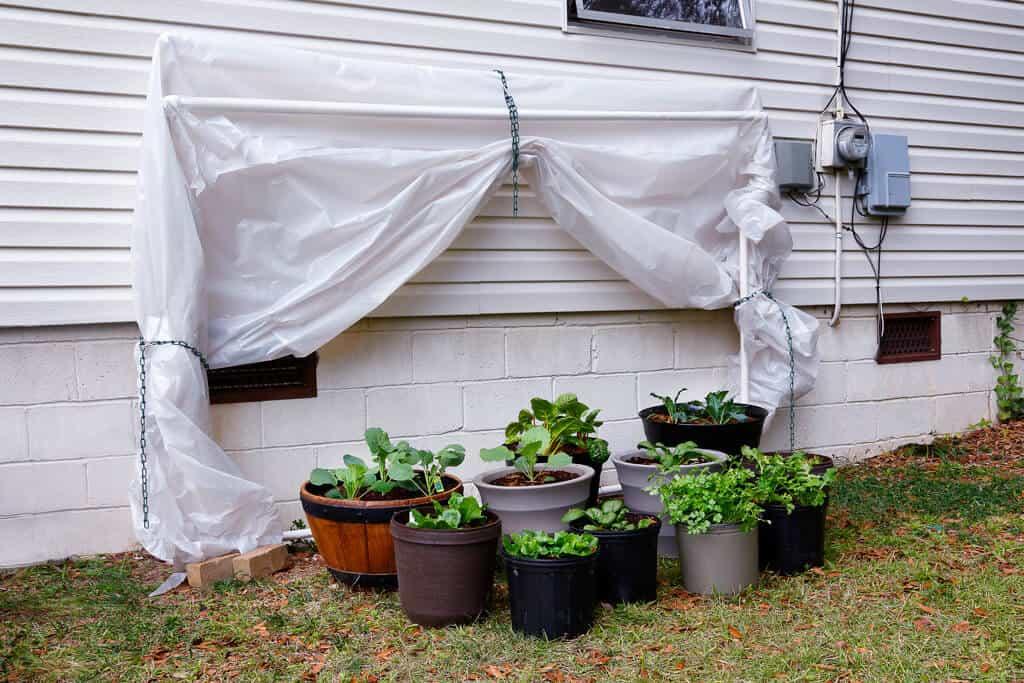 Invernadero casero DIY: 10 planos y algunas ideas para crearlo 2