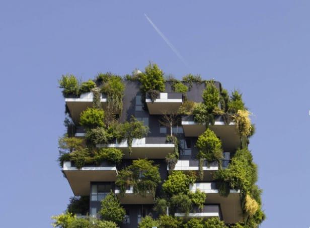Tips para conseguir que tu casa sea sostenible 1