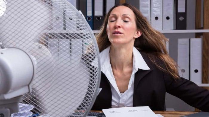 sofocos menopausia remedios caseros