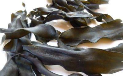 alga kombu legumbres